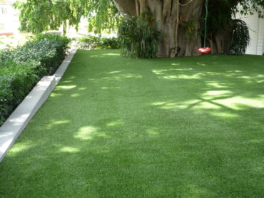 Greenslopes Leisure Lawn
